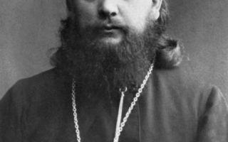 Священномученик димитрий павский, протоиерей