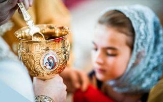 Канон молебный ко пресвятой богородице – до и после исповеди и причастия