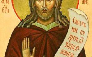 Преподобный иоанн прозорливый, ликопольский